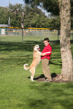 Friends 2. Young boy and his mixed breed dog royalty free stock images