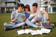 Friends. Group of friends studying at the park Stock Images