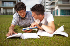 Friends. Group of friends studying at the park Royalty Free Stock Photography