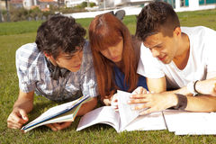 Friends. Group of friends studying at the park Stock Image