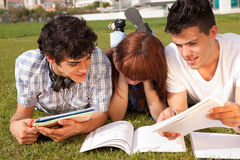 Friends. Group of friends studying at the park Stock Photo