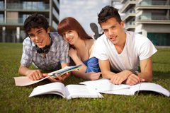 Friends. Group of friends studying at the park Royalty Free Stock Images