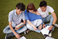 Friends. Group of friends studying at the park Royalty Free Stock Photos