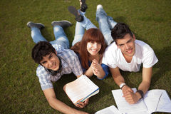Friends. Group of friends studying at the park Royalty Free Stock Image