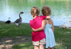 Friends. Two little girls have their arms around each other while they watch the geese and ducks at a pond Royalty Free Stock Photography