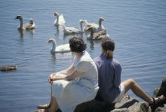 Friends. Sitting by a Lake royalty free stock photo