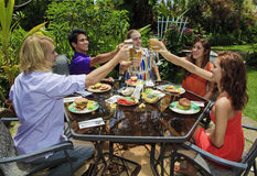 Friends at a backyard bar-b-que royalty free stock photos