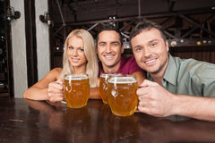 Friends at the bar. Two cheerful young men and beautiful young w Stock Image