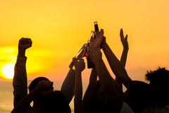 Friends Beach Party Drinks Toast Celebration Concept Stock Images