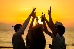 Friends Beach Party Drinks Toast Celebration Concept Royalty Free Stock Photography