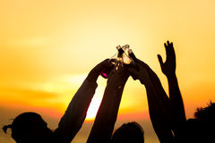 Friends Beach Party Drinks Toast Celebration Concept Stock Image