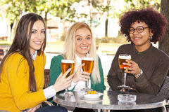 Friends beer Royalty Free Stock Photos
