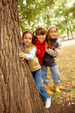 Friends behind tree Stock Image