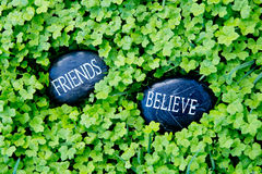 Friends Believe - text on stone in green clover. Friends Believe - text on stone in lush green clover stock photos