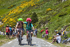 Friends on Bicycles. Port de Pailheres,France- July 6, 2013: Two youg men funny disguised climbing the difficult road to the Col de Pailheres in Pyrenees Royalty Free Stock Images