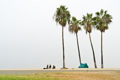 Friends camping in a remote beach Stock Photography