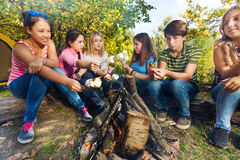 Friends on campsite grill marshmallow sitting Stock Photography