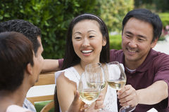 Friends Celebrating With Wine. Group of multiethnic friends toasting wine together stock photos