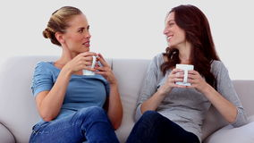 Friends chatting over cups of coffee stock video