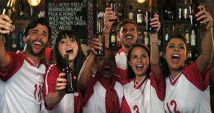 Friends cheering while having beer at bar counter. In pub stock footage