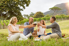 Friends cheering at picnic. Mature friends raising their wine glasses and toasting while relaxing on a picnic blanket near a basket in the park. Group of middle Royalty Free Stock Photography