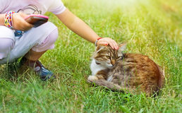 Friends - child and cat Stock Images