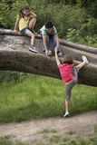 Friends Climbing On Fallen Tree Royalty Free Stock Image