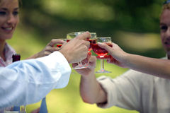 Friends clinking glasses Royalty Free Stock Image