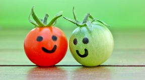 Friends. Closeup of two tomatoes with self painted faces Royalty Free Stock Photography