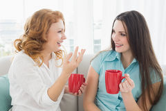 Friends with coffee cups conversing at home. Two happy young female friends with coffee cups conversing in the living room at home stock images