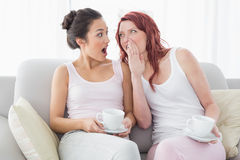 Friends with coffee cups gossiping in the living room Stock Images