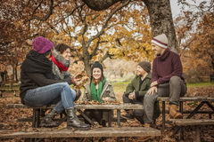 Friends conversating and throwing up leaves Stock Images