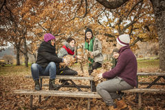 Friends conversating and throwing up leaves Stock Photos