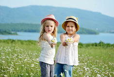 Friends with daisies Stock Photos