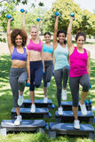 Friends doing step aerobics in park Stock Images