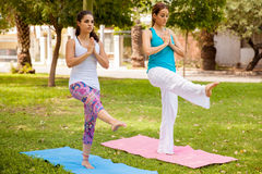 Friends doing yoga at a park Royalty Free Stock Photo