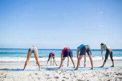 Friends doing yoga together with their teacher Royalty Free Stock Image