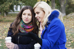 Friends drink coffee and gossip Stock Photography