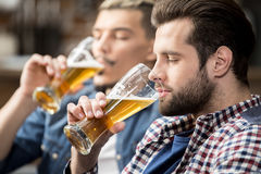 Friends drinking beer Stock Photography