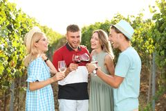 Friends drinking wine and having fun stock images
