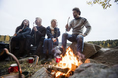 Friends Eating Marshmallows Near Campfire Royalty Free Stock Photography