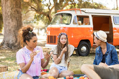 Friends enjoying food during picnic Royalty Free Stock Photos
