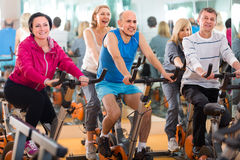 Friends exercise in  fitness club Stock Photography