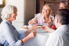 Friends and family celebrating wedding anniversary of nice old couple Stock Photos