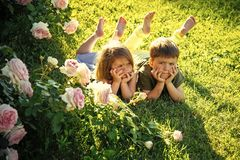 Friends and friendship concept. Children lying on green grass in summer garden. Childhood, leisure and fun. Boy and girl at blossoming rose flowers on lawn Stock Images