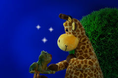 Friends. Frog and giraffe close friendship under the starry sky Royalty Free Stock Images