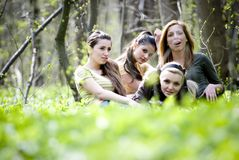 Friends gathered in forest Stock Image
