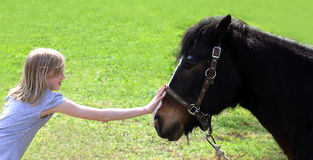 Friends - girl and horse Royalty Free Stock Images