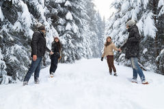 Friends Group Two Playful Couple Snow Forest Young People Outdoor Royalty Free Stock Image