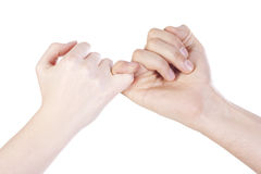 Friends handshake Stock Image